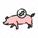 animal, bacteria, corona, pig, pork, transmission, virus