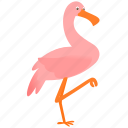 animal, bird, flamingo, pink icon