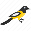 animal, bird, dark, tupial icon