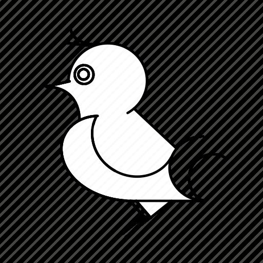 bird, birds, forest, nature, nest, wild, wildlife icon