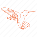 bees, bird, fly, humming bird, hummingbird, nectar, wings icon