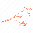 bird, birds, cardinal icon