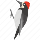 bird, flameback, pecker, sapsucker, wood, woodpecker icon