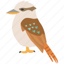 australia, australian, bird, bush, kingfisher, kookaburra, wild icon