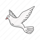 flying bird, bird, feather, dove, pigeons, wings, animal