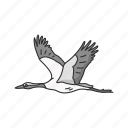 animal, bird, feather, flying bird, stork, wading bird, wood stork icon
