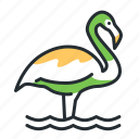 bird, flamingo, nature, wildlife icon