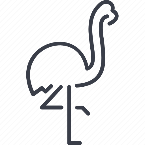 bird, contour, flamingo, silhouette, to fly, wing icon