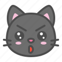 avatar, cat, cute, face, kitten