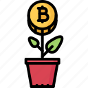 bitcoin, coin, cryptocurrency, plant, start, up
