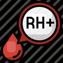 rh, positive, blood, type, donation, transfusion