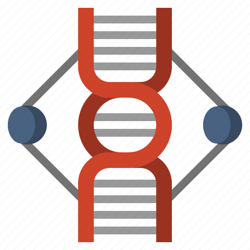 acid, deoxyribonucleic, dna, genetical, healthcare, medical, structure icon