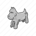 animal, boardgames, card drawing, dog, games, miniature dog, monopoly icon