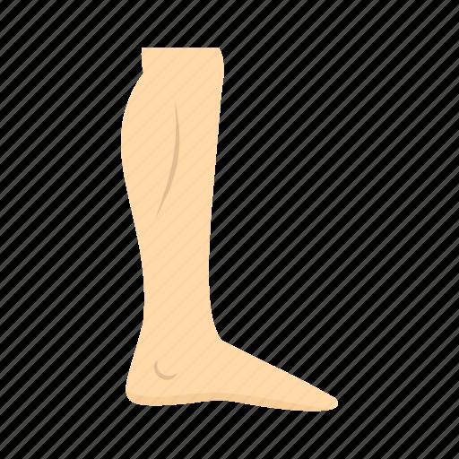 body, care, foot, health, human, leg, skin icon