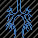 body, bodypart, bronchus icon
