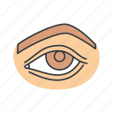 body part, brow, eye, eyelid, eyesight, human, sense organ icon
