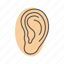 anatomy, body part, ear, hearing, human, pinna, sense organ icon