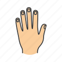 arm, finger, hand, human, limb, nail, wrist icon