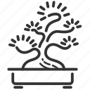 bonsai, garden, japanese, juniper, plant, tree icon