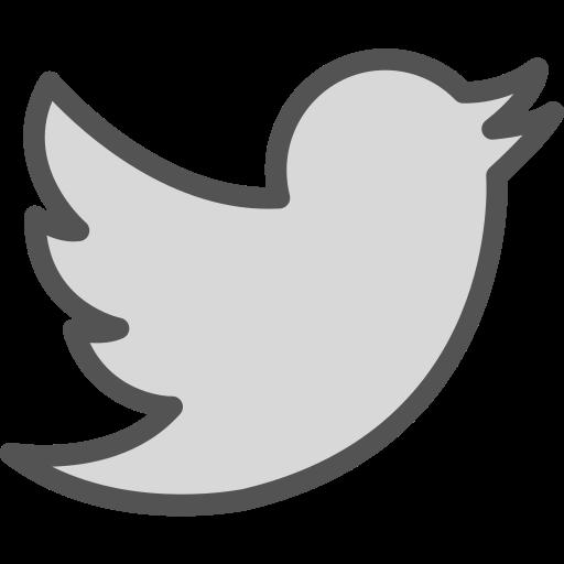 brand, logo, network, social, twiter icon