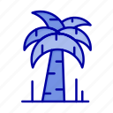 brazil, palm, tree icon