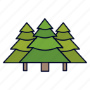 camping, forest, jungle, pines, tree