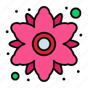 chamomile, floral, flower, plant icon