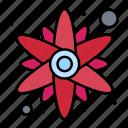 flower, rose, sun