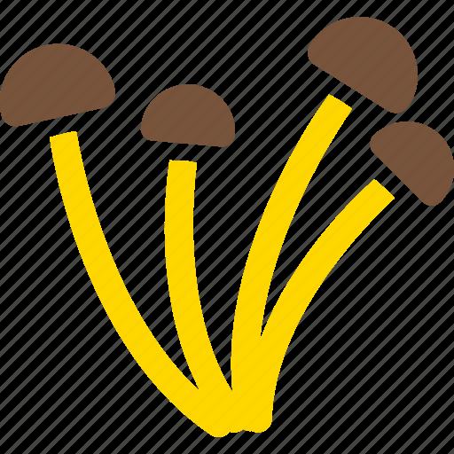 amanita, dabchick, fungi, fungus, mushroom, mushrooms, toadstool icon