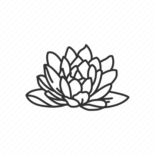 Buddhism Flower Lotus Lotus Flower Icon