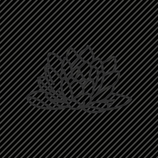 buddhism, flower, lotus, lotus flower icon