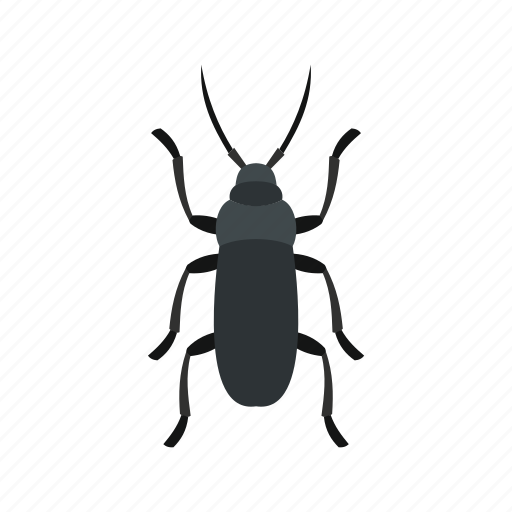 floral, flower, fly, gray bug, spring, tattoo, tropical icon