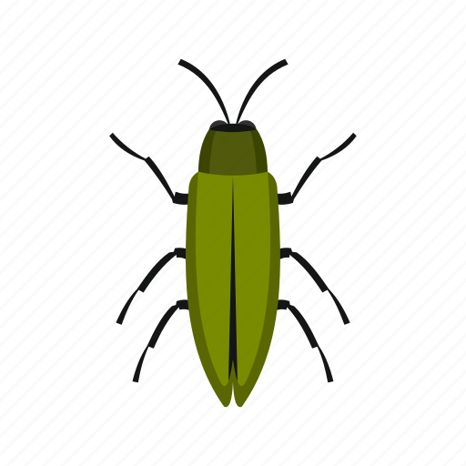 Floral, flower, fly, green beetle, spring, tattoo, tropical icon - Download on Iconfinder