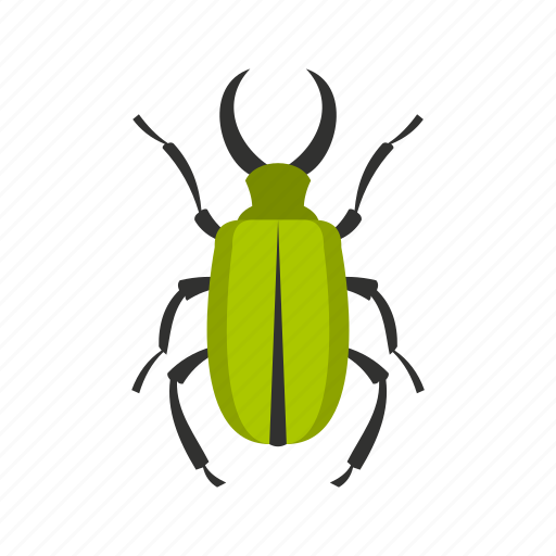 floral, flower, fly, green bug, spring, tattoo, tropical icon