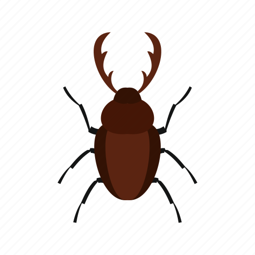 floral, flower, fly, rhinoceros beetle, spring, tattoo, tropical icon