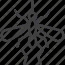 gnat, malaria, mosquito icon