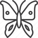 butterfly, moth, wing icon