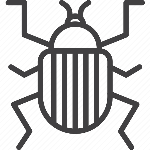 Beetle, bug, colorado icon - Download on Iconfinder