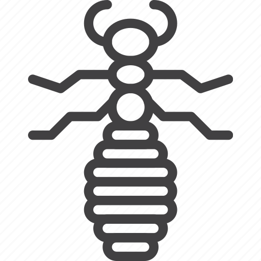 bug, flea, louse, parasite icon