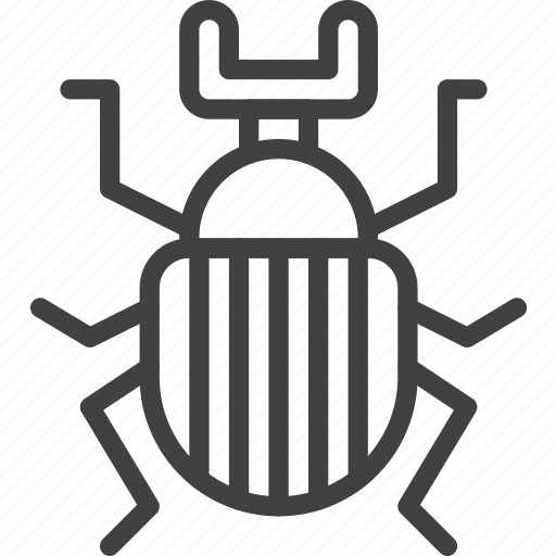 beetle, bug, scarab icon