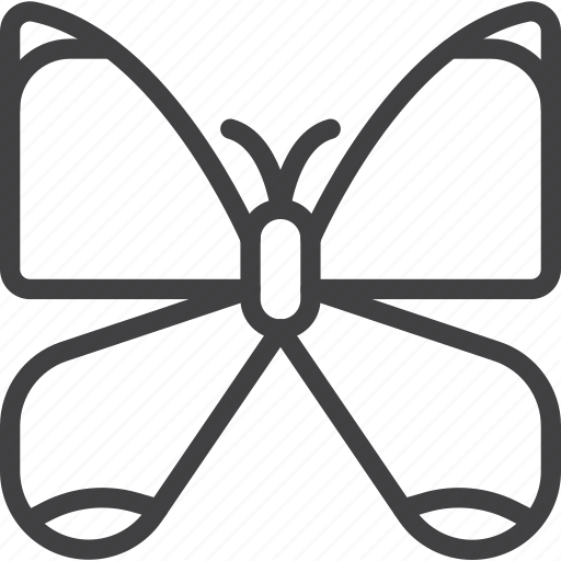 butterfly, flying, moth icon