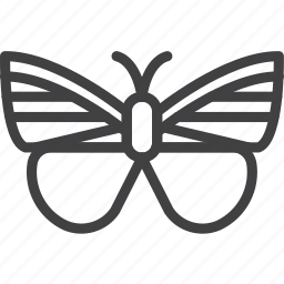 butterfly, insect, moth, wing icon