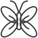 butterfly, insect, mayfly icon