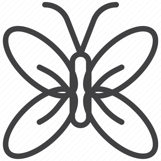 Butterfly, insect, mayfly icon - Download on Iconfinder
