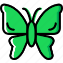 bug, butterfly, insect, nature