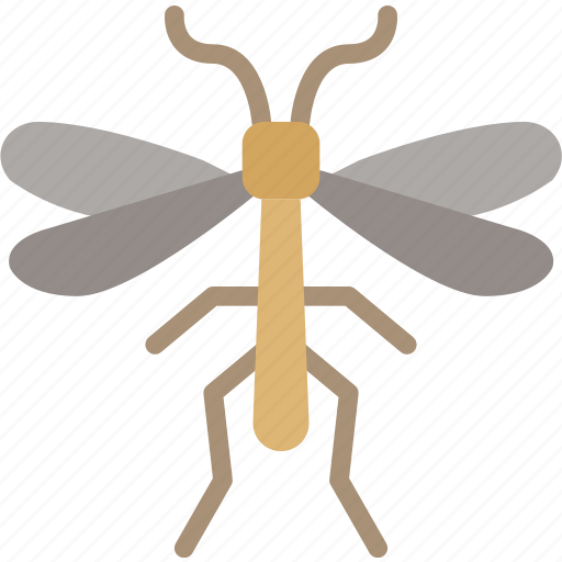 bug, insect, mosquito, nature icon