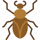bug, insect, nature, roach icon