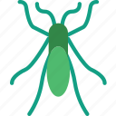 bed, bug, insect, nature icon