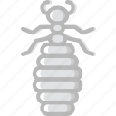 bug, flea, insect, nature icon