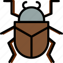 beetle, bug, insect, nature icon